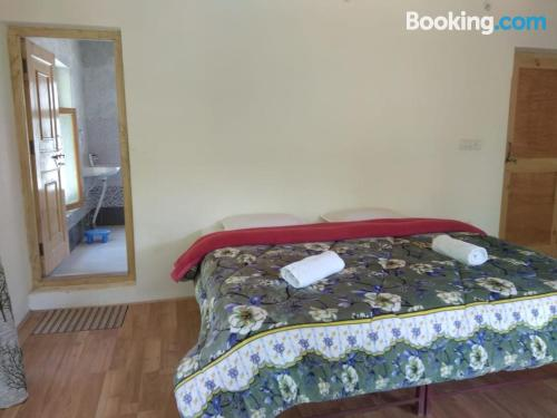 1 bedroom apartment apartment in Leh good choice for couples.
