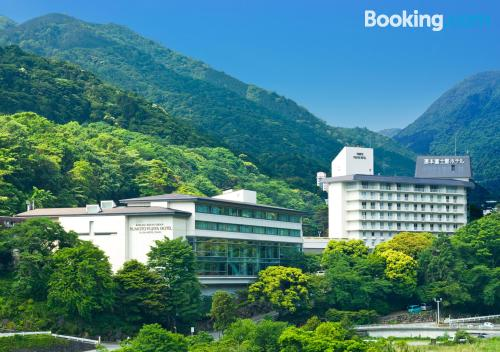 Apartment for 2 in Hakone. Swimming pool!