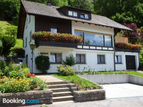 1 bedroom apartment in Alpirsbach for 2