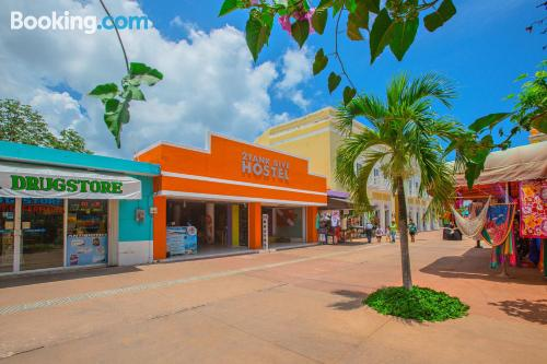 Place with internet in perfect location of Cozumel