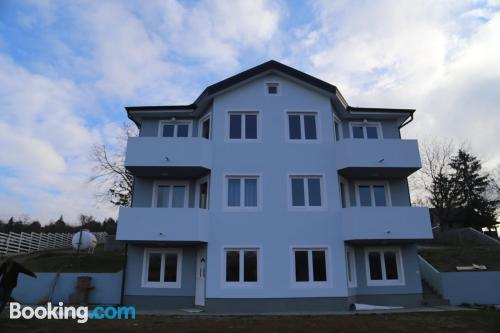 Terrace and internet apartment in Vrdnik with air
