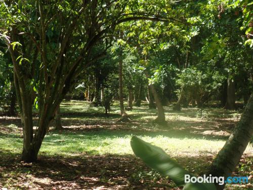Place in Santa Fe de Antioquia. For two.