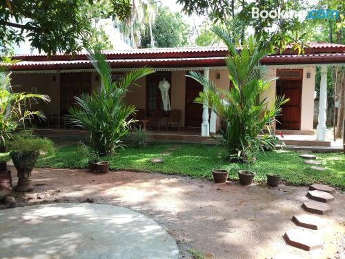 Estudio bonito en Sigiriya