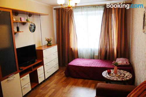 Animals allowed apartment in Berdsk with internet and terrace.