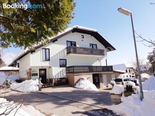 Acogedor apartamento de dos habitaciones en Mozirje