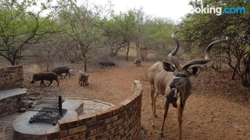 Place in Marloth Park. Great for six or more