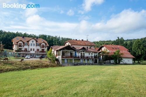 Apartment in Postojna with terrace