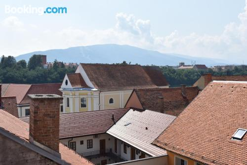 One bedroom apartment place in Maribor with terrace.
