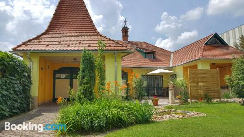 Spacious apartment in Esztergom. Child friendly
