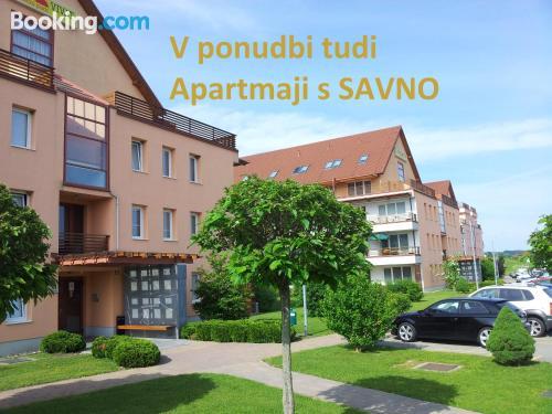 Apartamento pet friendly en Moravske-Toplice con terraza