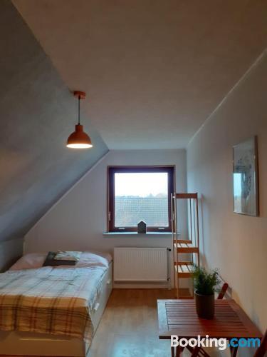 Apartamento de una habitación en Harrislee. Apto para perros.
