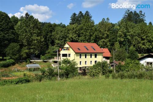 Cómodo apartamento en buena ubicación de Dolenjske Toplice.