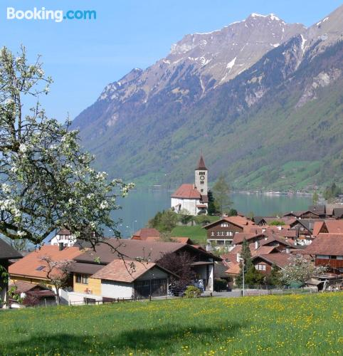 Place for 6 or more in Brienz. Great!.