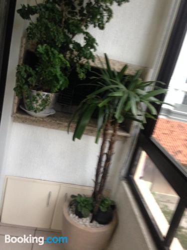 Apartamento de 60m2 en Florianópolis. Pet friendly.