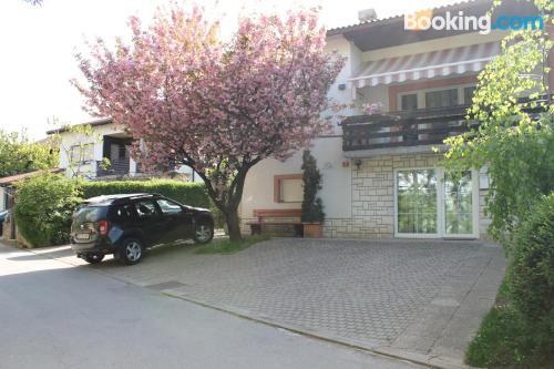 Apartamento apto para mascotas en centro en Postojna