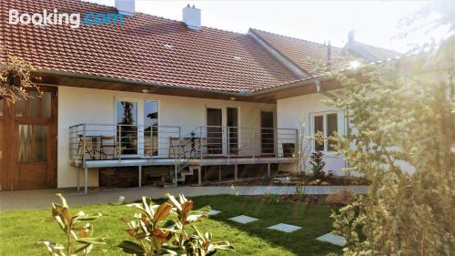 Apartment with terrace. Velké Pavlovice at your feet!