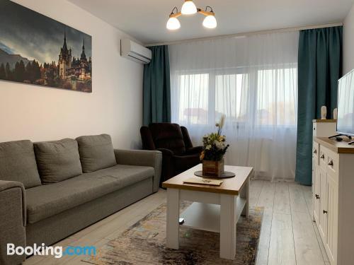 Convenient one bedroom apartment in Suceava.