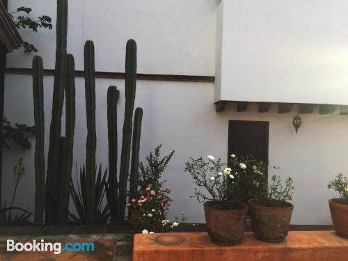 Apartamento en Guanajuato ¡Con terraza!