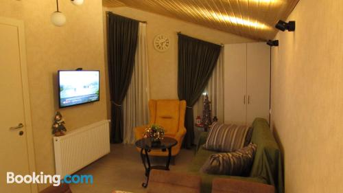 1 bedroom apartment in Bakuriani with heat