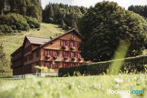 Good choice one bedroom apartment in perfect location of Schoppernau.