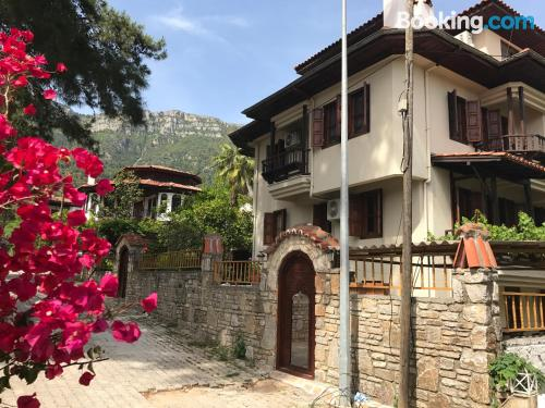 Large home in Mugla with heat