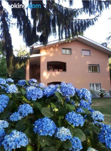 Terrace and internet home in Rocca Priora for two people.