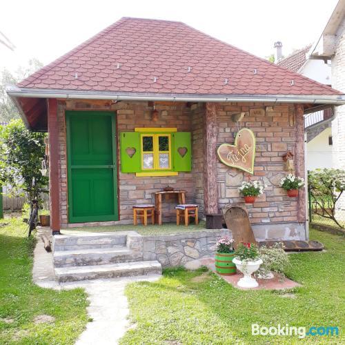 Bonito apartamento dos personas en Gornja Toplica.