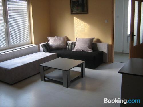 1 bedroom apartment home in Arandjelovac with 1 bedroom apartment.