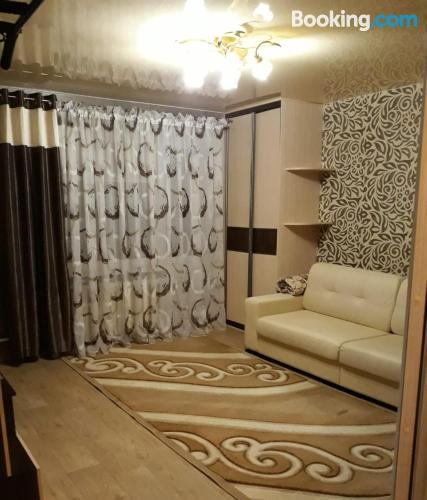 One bedroom apartment in Soligorsk with air