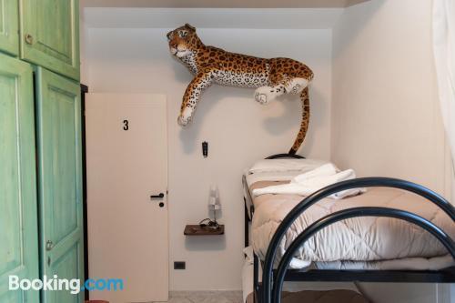 Convenient apartment with internet