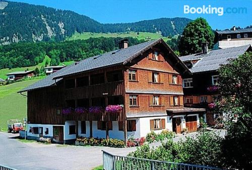 Spacious apartment in Au im Bregenzerwald with heating and internet