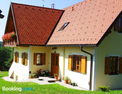 Apartamento en Leutschach con conexión a internet