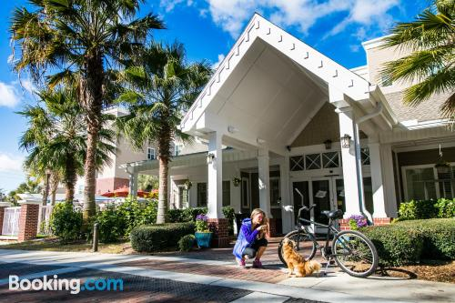 Swimming pool and wifi apartment in Fernandina Beach. Dog friendly!