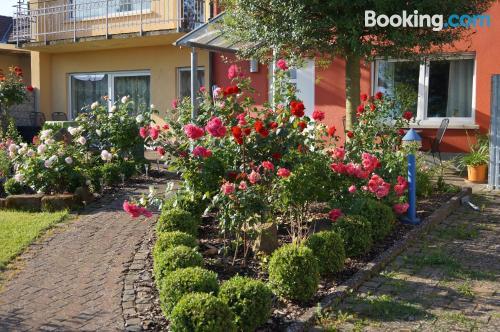 Place with terrace. Kapellen-Drusweiler experience!