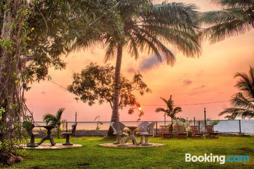 Animals allowed place in Negombo for 2