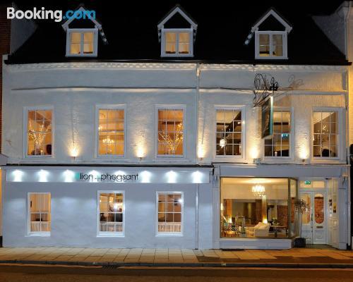 Apartment in Shrewsbury. Enjoy your terrace
