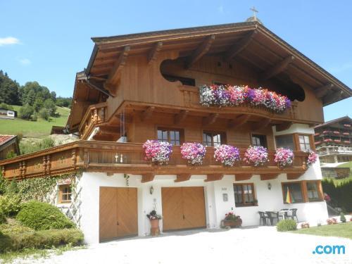 Convenient 1 bedroom apartment in best location of Niederau