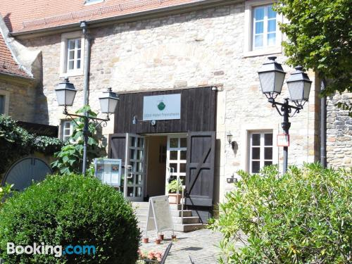 Pet friendly place in Freinsheim in incredible location