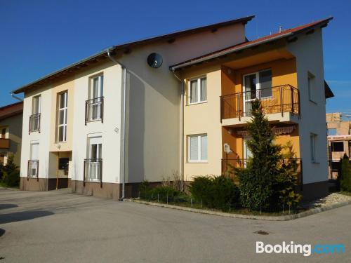 Apartamento en Hegykő. Apto para mascotas