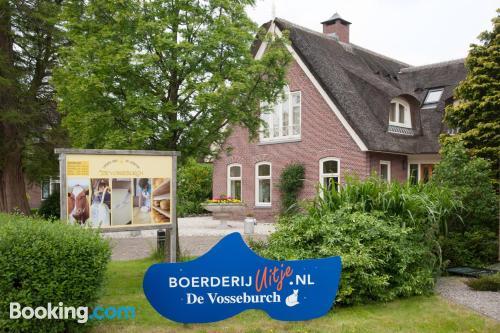 1 bedroom apartment in Langeraar with terrace