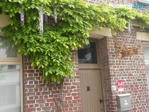 Apartamento con internet en buena zona de Gante