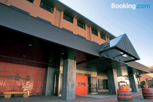 1 bedroom apartment place in Niseko. Internet!.