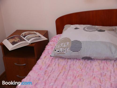 Cozy apartment. Pet friendly