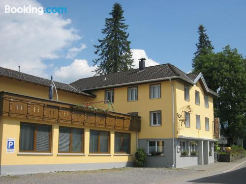 Terrace and internet apartment in Langenegg for two