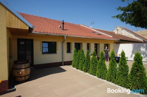 Apartment with terrace in perfect location of Valtice