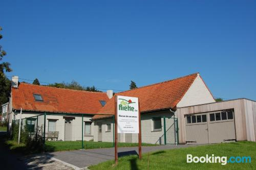 Huge apartment in Ronse for families