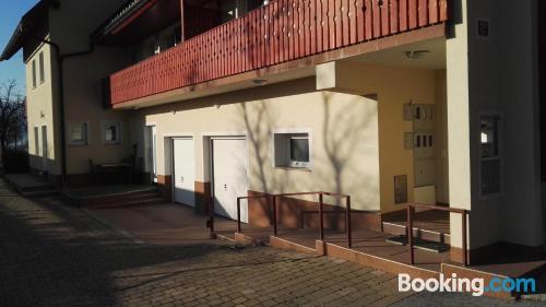 Apartment in Begunje na Gorenjskem. Internet!