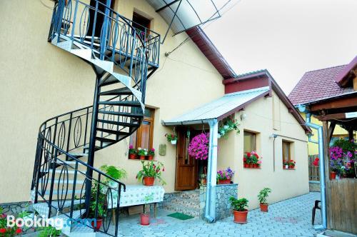 Apartamento pequeño en Gura Humorului