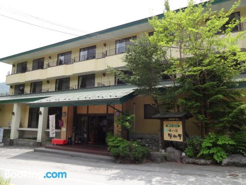 Nikko home with internet