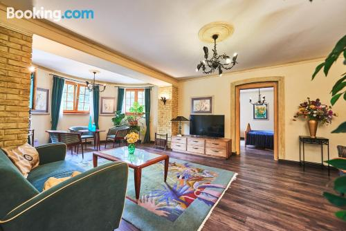 One bedroom apartment in Budapest. Dog friendly!